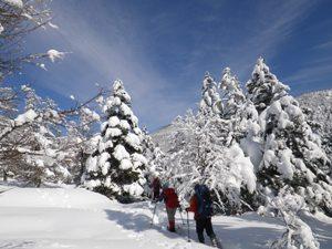 winter-guide_07.JPG